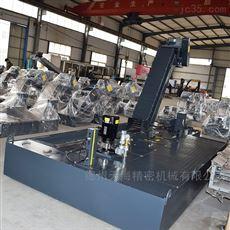 定做工厂加工定制磁性排屑机